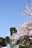 鎌倉の大仏さま