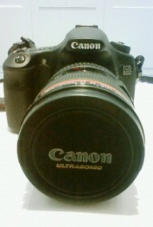 EOS 60D写真2