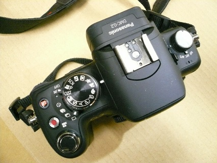 Panasonic DMC-G2写真5