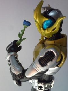 仮面ライダーコーカサス写真3